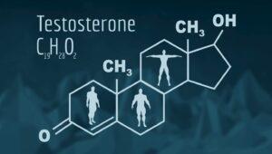 テストステロンとは